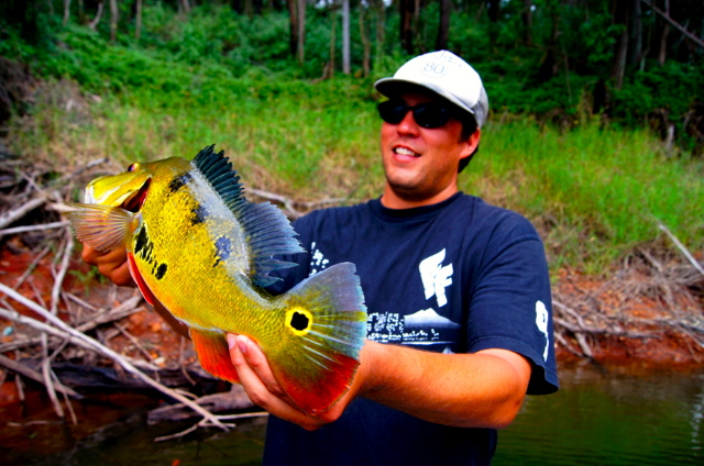 Welcome to hawaii bass fishing the best fishing in hawaii for Fly fishing maui