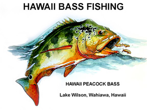 Welcome To Hawaii Bass Fishing The Best Fishing In Hawaii